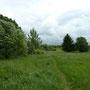 offene Wiesenflächen
