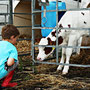 Ferien auf dem Bauernhof Eifel mit vielen Tieren