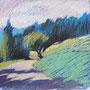 bei Bezau 28-28 Pastell auf Papier 2011 LS040