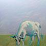 einsame Kuh 80 x 80 Acryl auf Leinwand 2015-01 LS010