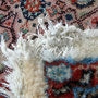 tappeti persiani trieste, gli animali domestici giocando possono mangiare il tappeto, per quanto sia grave il danno questo è sempre riparabile