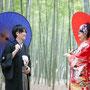 和装と番傘と竹林の色の調和はとって素敵