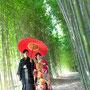 竹林での撮影が人気!