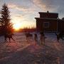 Auch die Hunde genießen die letzten Sonnenstrahlen