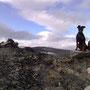 Auf einem windigen Gipfel im Jotunheimen Nationalpark