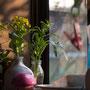 「小窓に花」(作品集「台所」より)