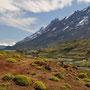 Wunderschöne Landschaft im Nationalpark Torres del Peine