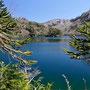 N.P. Huerquehue, Lago Verde