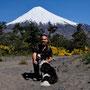 Ortskundige Begleitung auf unserer Wanderung zur Schneegrenze des Vulkan Osorno