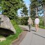 Willy nimmt uns mit in den Nationalpark Bayrischer Wald