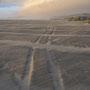 Overlanderspuren im Sand
