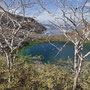 Lagune Tagus Cove