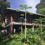 Ein spezielles B&B... Baumhaus mit Openair-Zimmern