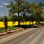 Frühling entlang unserer Route