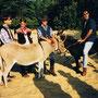 """DRIE COWBOY'S OP MONUMENTENJACHT"" AVRO 1999 Presentatie"