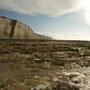 Vue de la plage à marée basse.