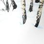 BETULLE e NEVE - Acrilico su alluminio - cm 100 x 80 - 2007