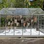 """""""Talbotia Elegans"""", super bien! gewächshaus für zeitgenössische kunst, Berlin 2017"""