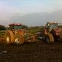 Le labour est réalisé à la charrue et juste après, le blé est semé : Pas de temps à perdre car la météo ne nous laisse que quelques heures sans gouttes d'eau.