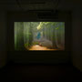 HEIDI49,video installation, 2009
