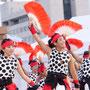 赤い扇子と黒い水玉模様/庄司光宏さん