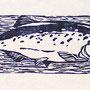 Fisch, Holzschnitt, Öl auf Chinapapier