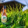 Brauerei Monstein Kampagne Weizenbier 2017