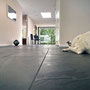 Fredrickson Nagle House: It's a dog's life. So it is.