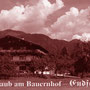 Kimmig - Österreich - Endfeld