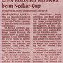 121127 - Mittelbadische Presse