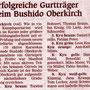 090725 - Mittelbadische Presse