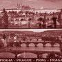 Hurst - Tschechische Republik - Prag