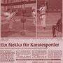 131107 - Mittelbadische Presse