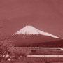 Jugendaustausch - Japan