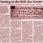 091230 - Mittelbadische Presse
