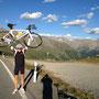 Geschafft, der Berninapass ist ein weiteres Mal überquert...
