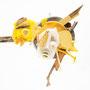 Gele vogel 70x70cm