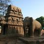 carmen und steinelefant