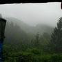 im wald bei crni vrh, slowenien
