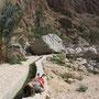 nach der lange zeit im wasser, wärmt sich carmen auf einem falaj (wasserkanal) an der sonne
