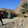 unterwegs im wadi