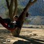 relaxen im akazienwald