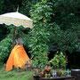 buddha mit sonnenschirm