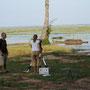 vogelbeobachtung mit teleskop