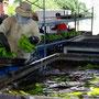 thailändische gastarbeiter waschen und verpacken die geernteten bananen