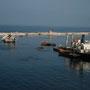 im hafen von alexandria verrotten die schiffe im hafenbecken. dementsprechend ist das wasser auch ölgetränkt