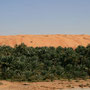 von weitem sind schon die sanddünen zu sehen