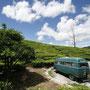 fahrpause inmitten von teefeldern