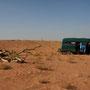 5_in der wahiba wüste