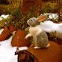 No.137 ウサギ